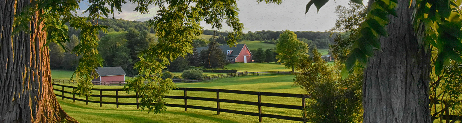 Farm in Stanford, NY
